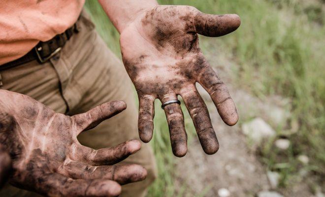 「お前は鰈だ、泥にまみれろよ」